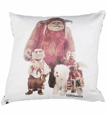 Labyrinth Friends 40cm Feather Filled Cushion