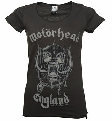 Ladies Charcoal Motorhead England T-Shirt from Amplified