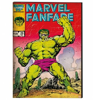 Marvel Comics The Incredible Hulk Printed Canvas 50cm x 70cm from Graham & Brown