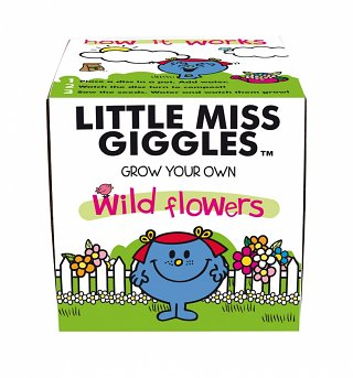 Little Miss Giggles Wild Flowers Grow Kit